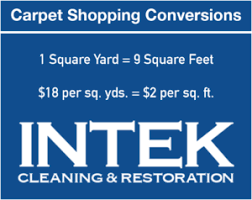 vs hiring professional carpet cleaners