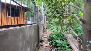 Cost And Progress Update Of Our 1 600 Sq Meters Concrete And Metal Fence Construction Philippines Youtube