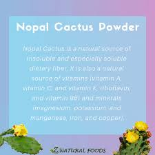 organic nopal cactus powder from pure