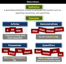 determiner what is a determiner