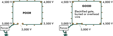 Electric Goat Fence
