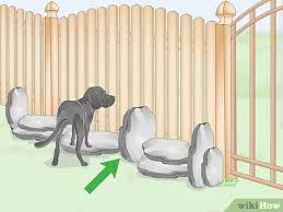 How To Stop A Dog From Digging Under The Fence 8 Steps