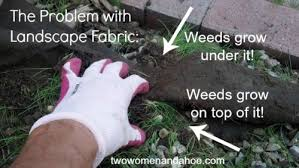 landscape fabric weed barrier cloth