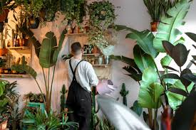 When Polly Met Murphy - Skin Care, Indoor Plants, Skin Care Routine