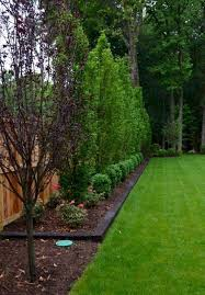 15 Gorgeous Living Fences For Your Yard Page 11 Of 15 Worthminer Privacy Fence Landscaping Large Backyard Landscaping Fence Landscaping