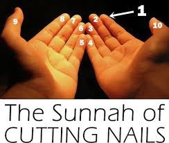 the sunnah of cutting nails sew some