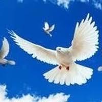 Obituary | Ada Bailey | WM. REESE & SONS MORTUARY P.A.
