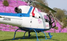 「芝桜ヘリコプター」の画像検索結果