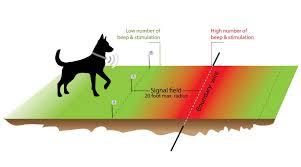 Best Custom Shape Wireless Dog Fence Bestdogfood Com