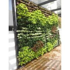 life wall vertical gardens rs 975