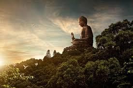 best 25 buddhist twitter backgrounds