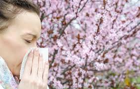 i ditched allergy meds for a sinus wash