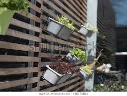 Outdoor Flower Pot Hanging On Wooden Stock Photo Edit Now 616155011
