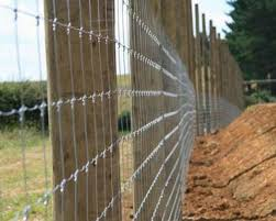 Fence Types White Fencing