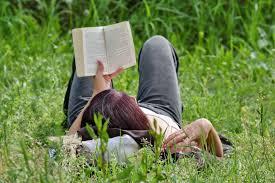 Bezplatný obrázek: kniha, tráva, čtení, relaxace, léto, Žena ...