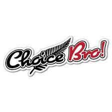 Choice Bro Silver Fern Sticker New Zealand Nz Kiwi Car Fern Decal 6348en Ebay