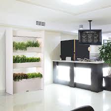 vertical wall garden indoor in top