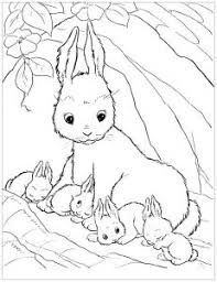 rabbit free printable coloring pages