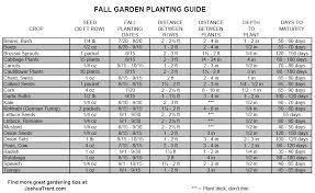 vegetable garden growing tips with