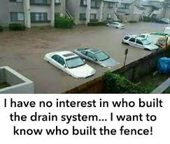 Who Build The Fence Best Funny Pictures Memes Funny Dog Memes