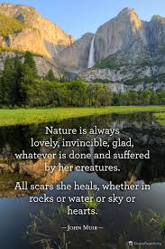 john muir quotes john muir quote god created it for us and so