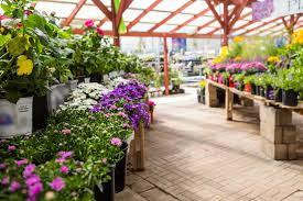 garden centre definition and meaning