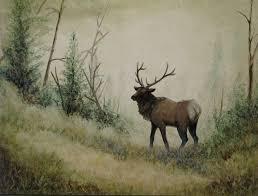 elk desktop wallpapers top free elk