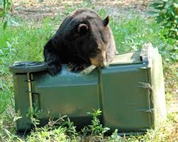 Keep Bears Out Of Food Garbage Pet Food Livestock Feed Crops