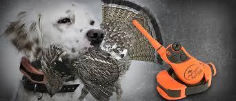 Hunting Dog Training E Collars Supplies Sportdog Canada