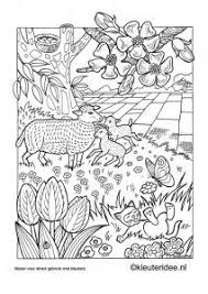13 Best Dutch Volwassen Kleurplaten Images Coloring Pages