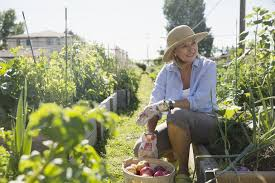 12 worst vegetable garden pests