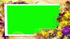 background green screen autumn flower