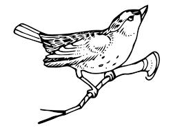 Kleurplaat Vogel Op Tak Gratis Kleurplaten Om Te Printen