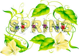 Web Development | Clip art, Spring facts, Flower clipart