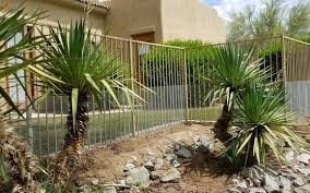 Snake Fence Installation By Rattlesnake Solutions In Phoenix Az Alignable