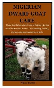 Nigerian Dwarf Goats Care: Dairy Goat ...