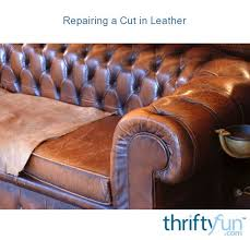 repairing a cut in leather thriftyfun