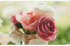 quotes about roses life love and thorns blog