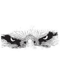 Eagle Eyes Staring Down Vinyl Wall Decal Sticker 5517 Stickerbrand