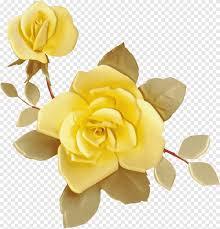 رسم فكرة زهرة وردة صفراء ألبوم ورد Png
