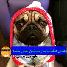 Image About ت ح ش ي ش In تحشيش By Queen On We Heart It