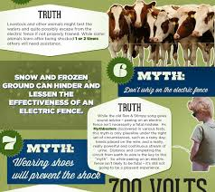 11 Myths About Electric Fences Visual Ly