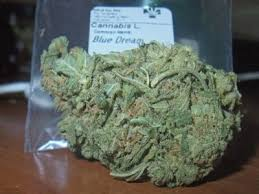 Buy Blue Dream Online | Dzen Pharmacy