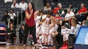 Dayton coach Shauna Green on UD Arena renovations: 'Amazing'