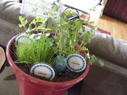 diy herb garden for the kitchen the