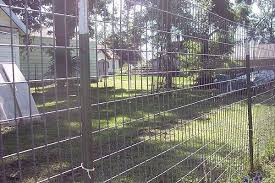 How To Build A Great Escape Proof Dog Fence Cuteness Dog Proof Fence Dog Fence Building A Dog Kennel
