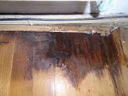 repair wood floor water damage water
