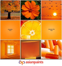 pin by asian paints on shades of summer