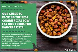 low fat dog foods canned dry