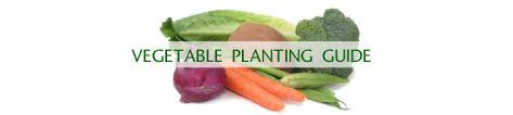 vegetable planting guide southern
